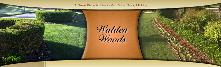 Walden Woods